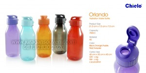 Orlando Hydration Water Botle